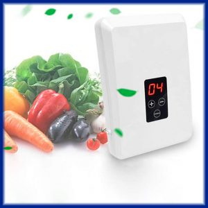 Generador Ozono para Comidas, Frutas y Verduras